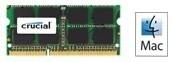 Crucial RAM  4GB 1066MHz SO DIMM - DDR3 PC3-8500 - CT4G3S1067MCEU