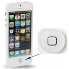 Home Botton per iPhone 5 Bianco - ORIGINALE
