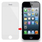 Vetro Touch per Display LCD per iPhone 5 (Bianco)