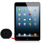 Home Botton per iPad Mini (Black) - ORIGINALE